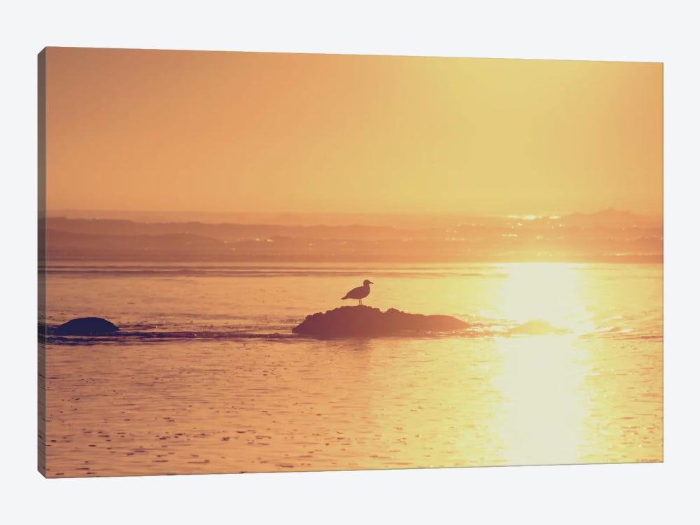Kalaloch Sunset I by Laura Marshall 1-piece Art Print