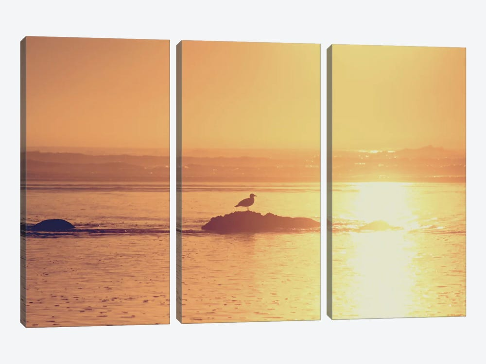 Kalaloch Sunset I by Laura Marshall 3-piece Canvas Print