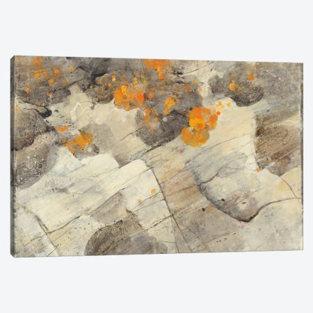 Lava Flow Canvas Print #WAC2287} by Albena Hristova Canvas Wall Art