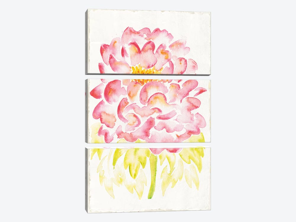 Floral Delight II by Elyse DeNeige 3-piece Canvas Art