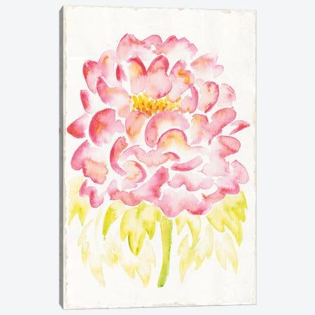 Floral Delight II Canvas Print #WAC2306} by Elyse DeNeige Art Print
