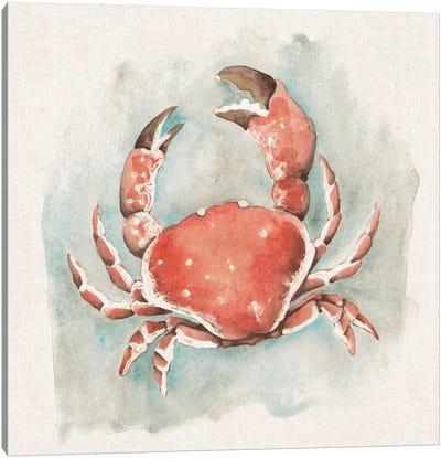 Coastal Mist - Crab Canvas Art Print