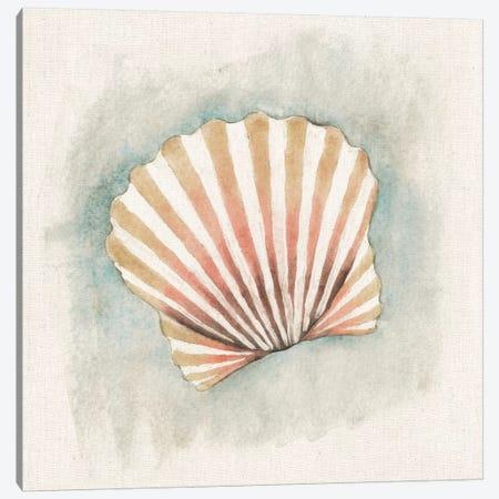 Coastal Mist - Scallop Canvas Print #WAC2317} by Elyse DeNeige Canvas Wall Art