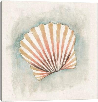 Coastal Mist - Scallop Canvas Art Print