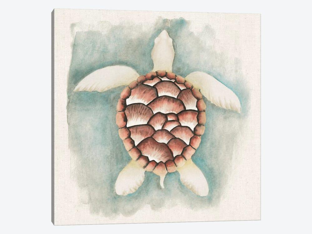 Coastal Mist - Sea Turtle by Elyse DeNeige 1-piece Canvas Print