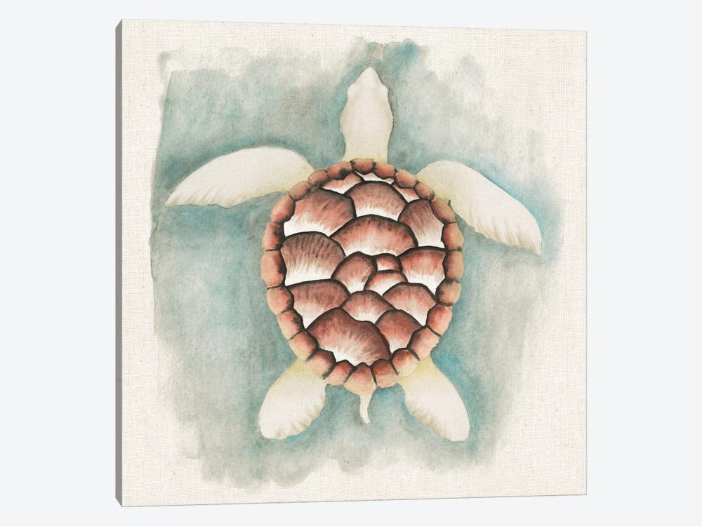 Coastal Mist - Sea Turtle by Elyse DeNeige 1-piece Canvas Print