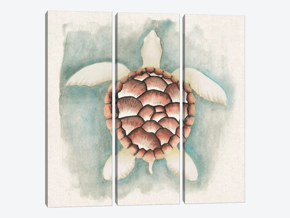 Coastal Mist - Sea Turtle by Elyse DeNeige 3-piece Canvas Print