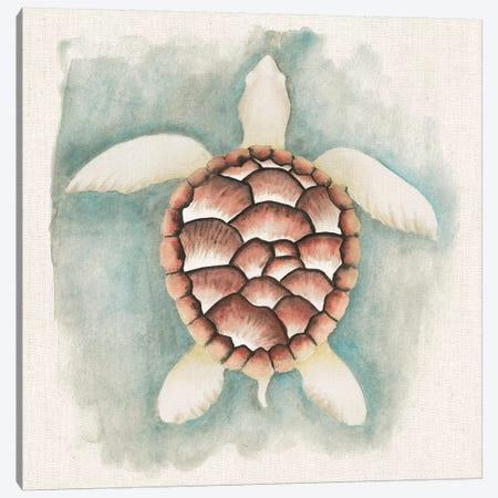 Coastal Mist - Sea Turtle Canvas Print #WAC2318} by Elyse DeNeige Canvas Print