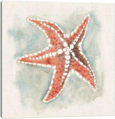 Coastal Mist - Starfish Canvas Print #WAC2319