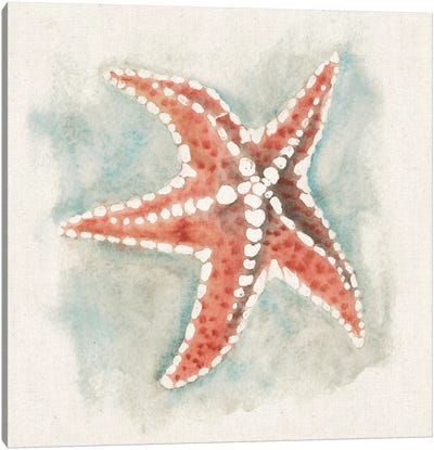 Coastal Mist - Starfish Canvas Art Print