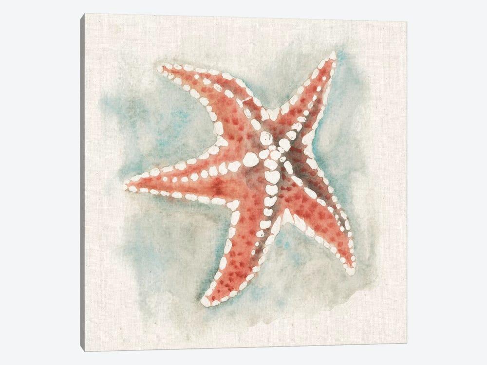 Coastal Mist - Starfish by Elyse DeNeige 1-piece Canvas Wall Art