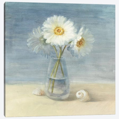 Daisies and Shells Canvas Print #WAC231} by Danhui Nai Art Print