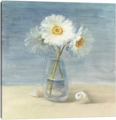 Daisies and Shells Canvas Print #WAC231