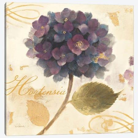 Abundant Hydrangea I  Canvas Print #WAC23} by Albena Hristova Canvas Art Print