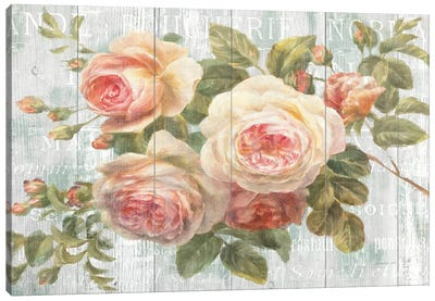 Vintage Roses on Driftwood Canvas Print #WAC243