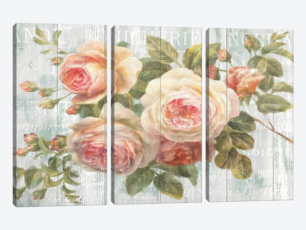 Vintage Roses on Driftwood by Danhui Nai 3-piece Canvas Wall Art