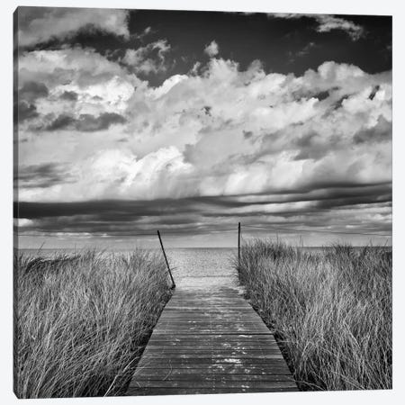 Oak Bluff's Beach Path Canvas Print #WAC2459} by Katherine Gendreau Canvas Art