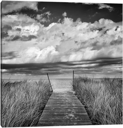 Oak Bluff's Beach Path by Katherine Gendreau Canvas Art