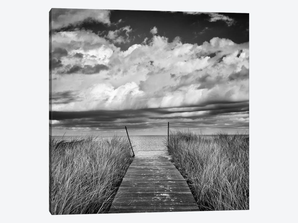 Oak Bluff's Beach Path by Katherine Gendreau 1-piece Canvas Art Print