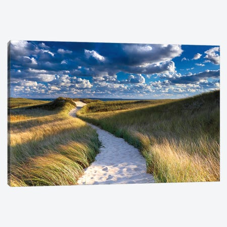 Philbin Beach Path Canvas Print #WAC2461} by Katherine Gendreau Canvas Print