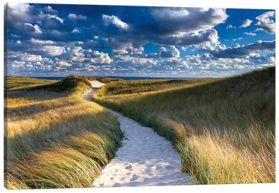 Philbin Beach Path by Katherine Gendreau Canvas Print