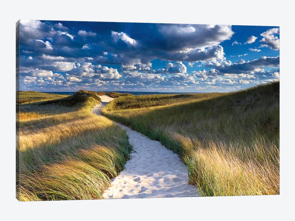 Philbin Beach Path by Katherine Gendreau 1-piece Canvas Art