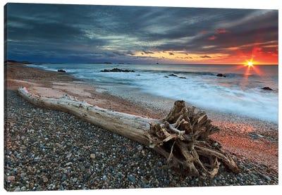 Sakonnet Driftwood Canvas Print #WAC2463