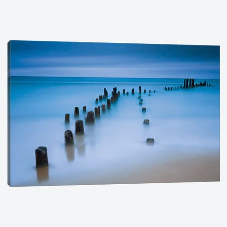 Sentinals Canvas Print #WAC2465} by Katherine Gendreau Canvas Artwork