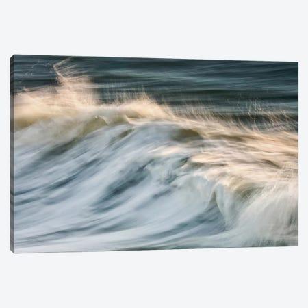 South Beach Surf Canvas Print #WAC2466} by Katherine Gendreau Canvas Art