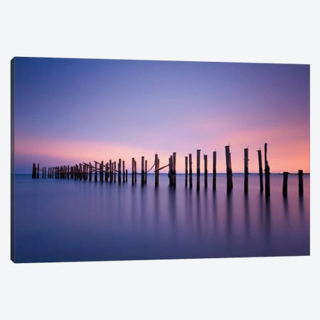 Still Color Canvas Print #WAC2471} by Katherine Gendreau Canvas Wall Art