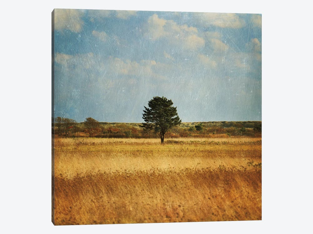 The Lonely Tree by Katherine Gendreau 1-piece Canvas Art