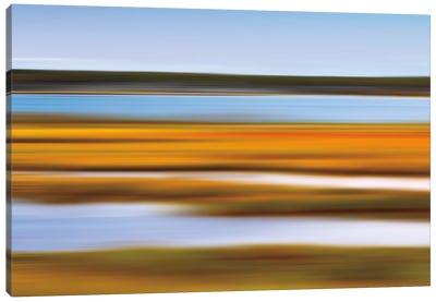 Autumn Marsh Canvas Print #WAC2497