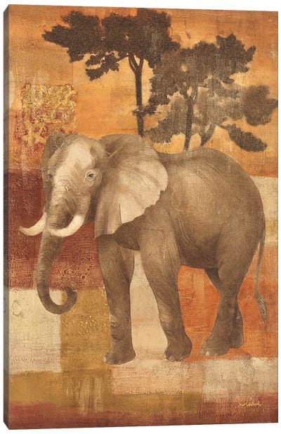 Animals on Safari IV Canvas Print #WAC24