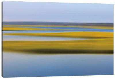 Evening Marsh Canvas Art Print
