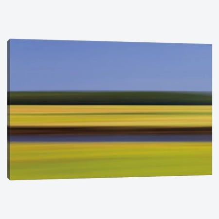 Midday Marsh Canvas Print #WAC2507} by Katherine Gendreau Art Print
