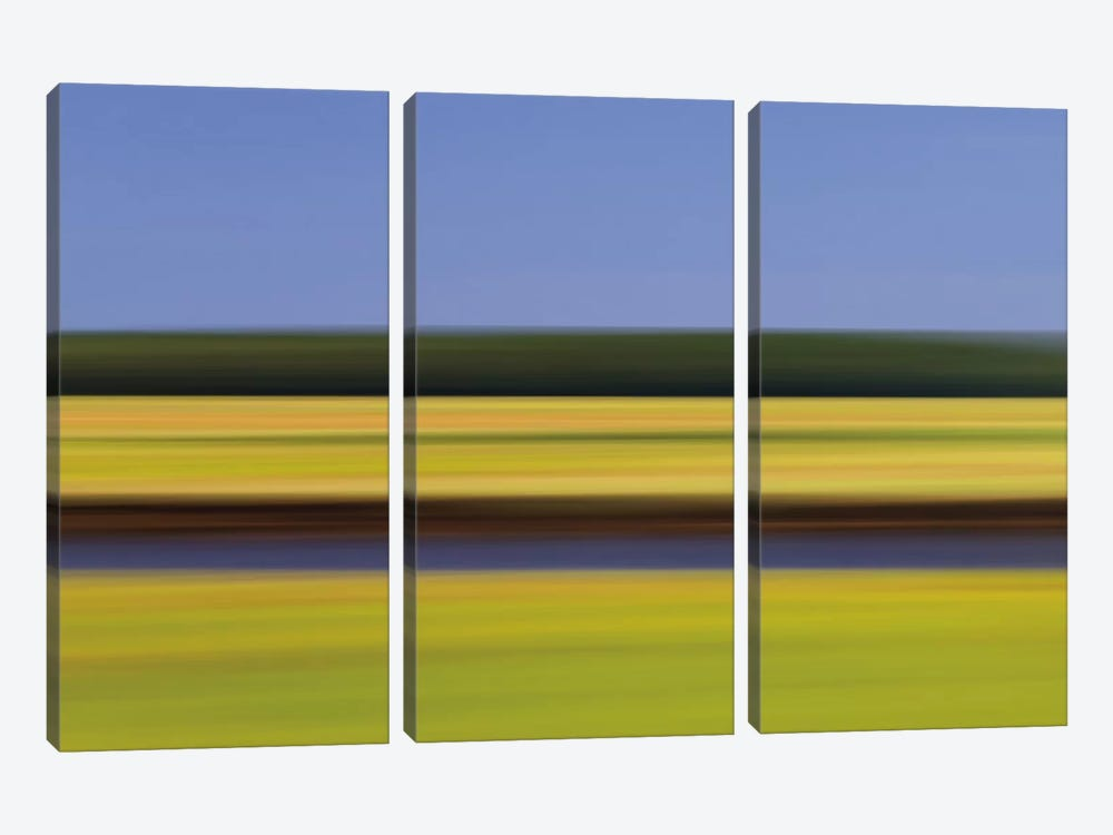 Midday Marsh by Katherine Gendreau 3-piece Canvas Art Print