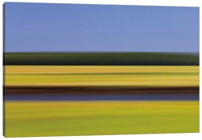 Midday Marsh Canvas Art Print