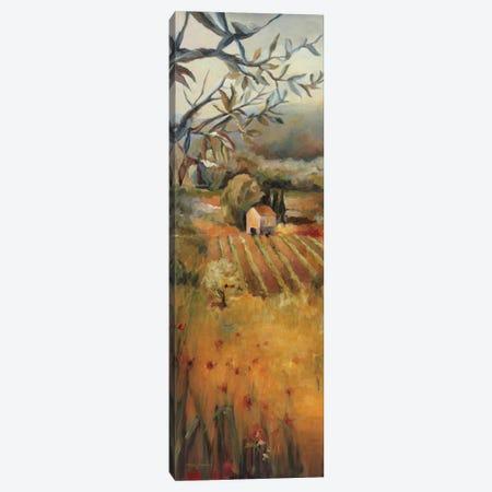 Vineyard in the Valley I Canvas Print #WAC2587} by Marilyn Hageman Canvas Print