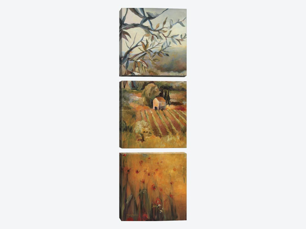 Vineyard in the Valley I by Marilyn Hageman 3-piece Canvas Art Print