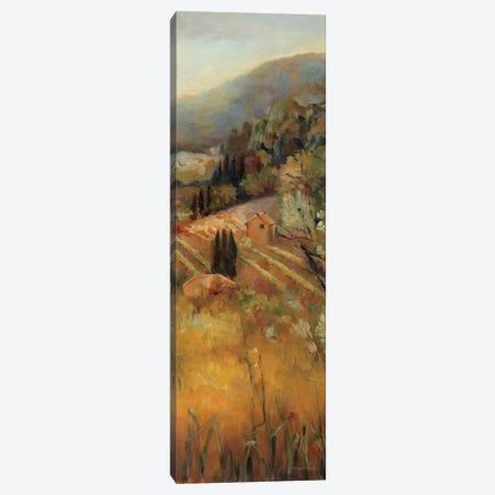 Vineyard in the Valley II Canvas Print #WAC2588} by Marilyn Hageman Canvas Wall Art
