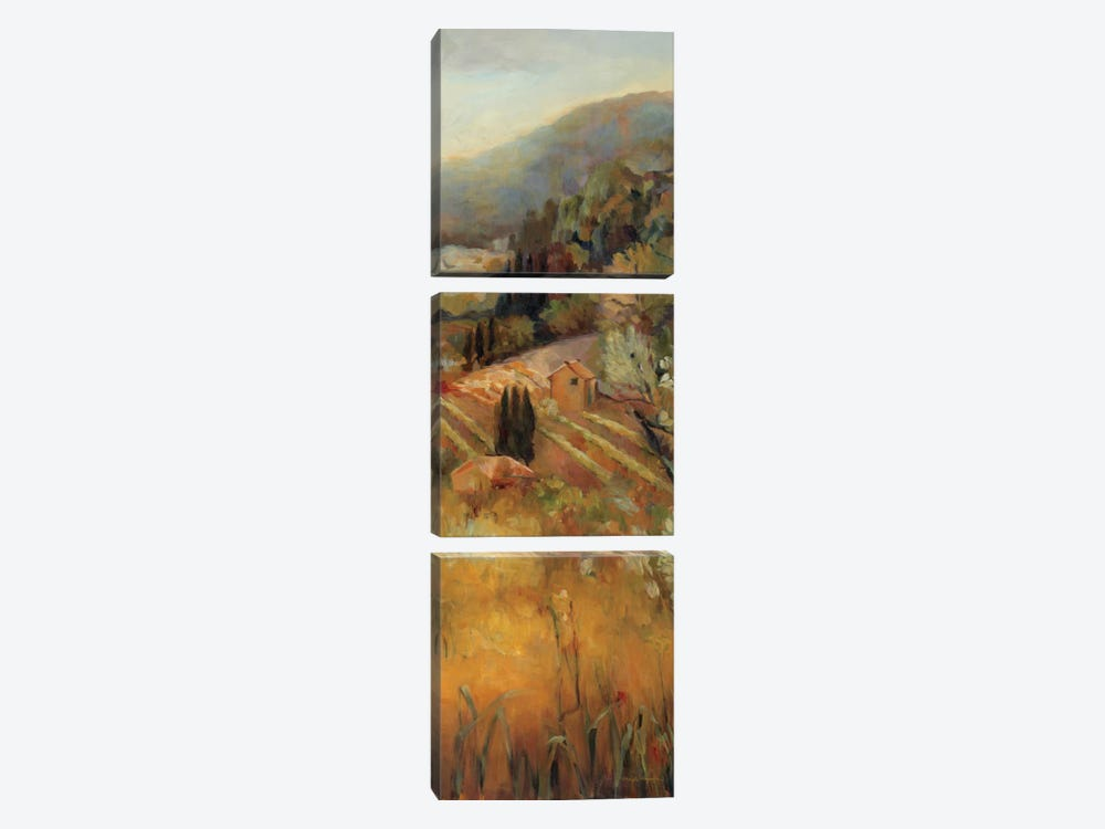 Vineyard in the Valley II by Marilyn Hageman 3-piece Canvas Art