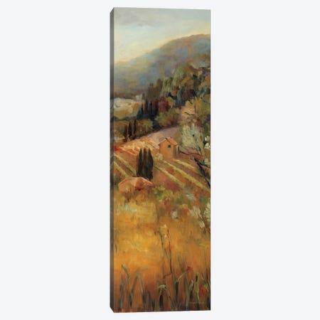 Vineyard in the Valley II Canvas Print #WAC2588} by Marilyn Hageman Canvas Wall Art