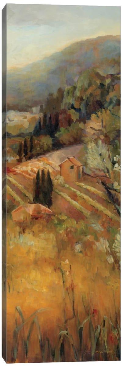 Vineyard in the Valley II Canvas Art Print