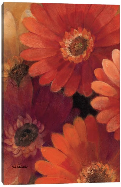 Garden of Gerberas II Canvas Art Print