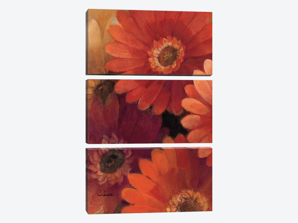 Garden of Gerberas II by Albena Hristova 3-piece Canvas Wall Art