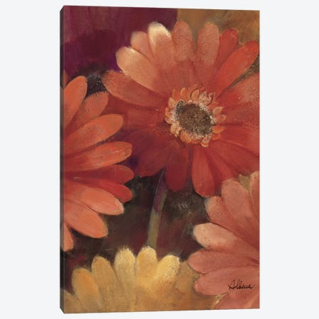 Garden of Gerberas III Canvas Print #WAC2757} by Albena Hristova Canvas Art