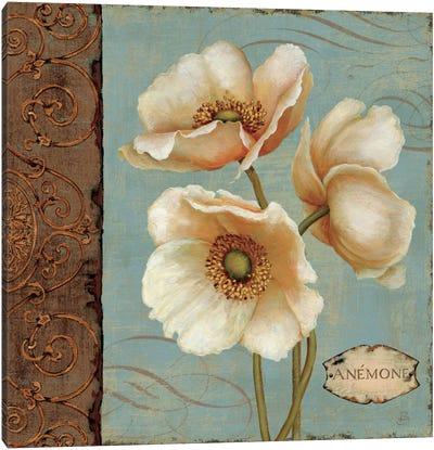 Windflower I  Canvas Print #WAC277