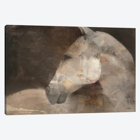 Looking Back Canvas Print #WAC2783} by Albena Hristova Canvas Wall Art