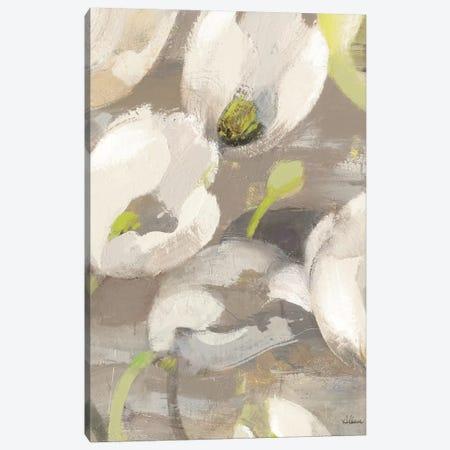 Tulip Delight I Canvas Print #WAC2784} by Albena Hristova Art Print