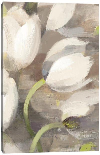 Tulip Delight II Canvas Art Print
